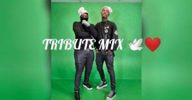 Lindani Alex – Amapiano Tribute Mix Ft Mpura Mpura & Killer Kau