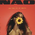 NAO – And Then Life Was Beautiful