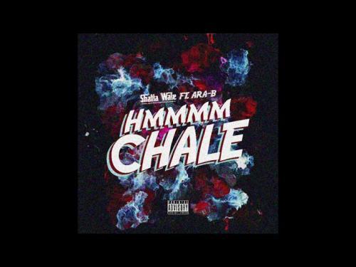 Shatta Wale x Ara-B - Hmmm Chale