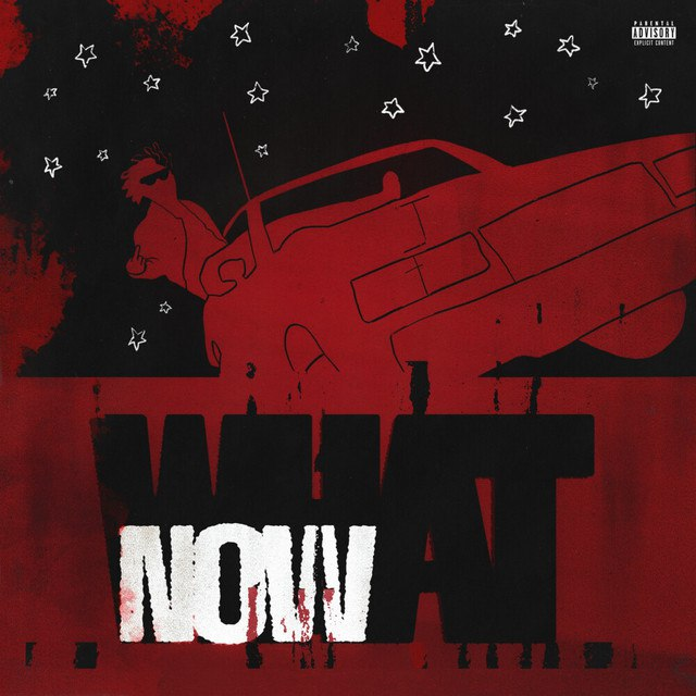 DC the Don - WHAT NOW mP3