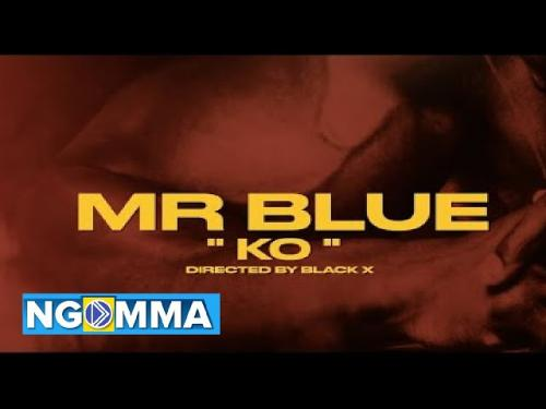 Mr Blue - KO