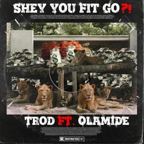 Trod - Shey You Fit Go?! Ft. Olamide