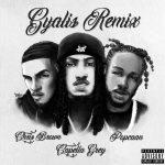 Capella Grey – Gyalis (Remix) Ft. Chris Brown & Popcaan