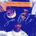 Rascoe Kaos, Tee Jay & Obbey Amor – Sabelo ft. Sir Trill, ThackzinDJ & Nkosazana Daughter