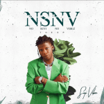 Seyi Vibez – NSNV (No Seyi No Vibez)